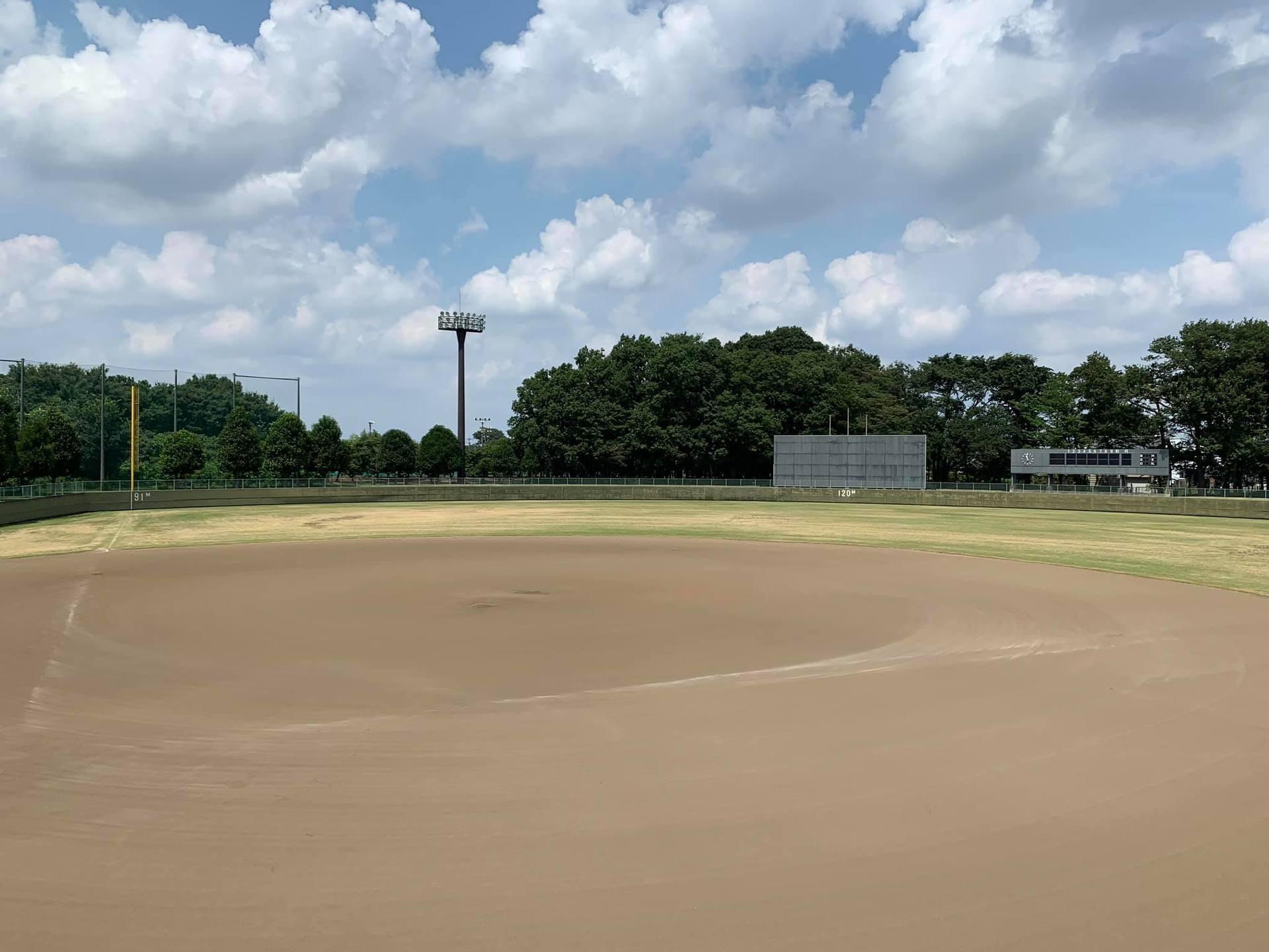 niiza_baseball.jpg